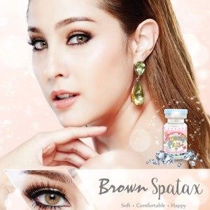 spatax-brown