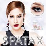 spatax-gray