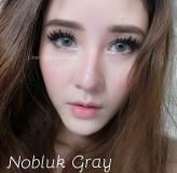 nobluk-grey_02